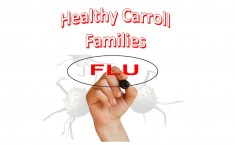 Healthy Carroll Families - Fall 2015